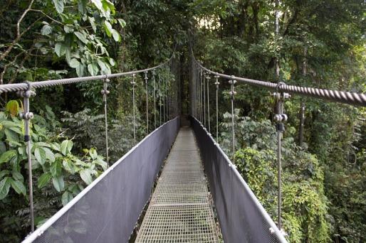 bridge-2124896_640