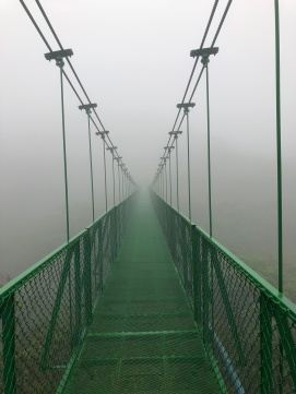 hanging bridge2