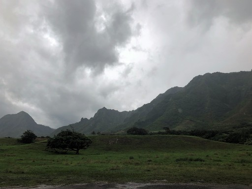 Kualoa Ranch -- Jurassic Valley